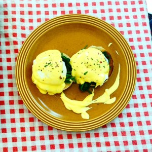Eggsflo